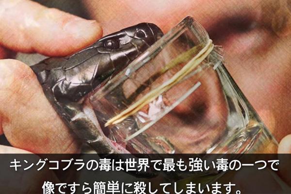 ヒトの血液もランクイン!世界で最も高価な液体トップ10
