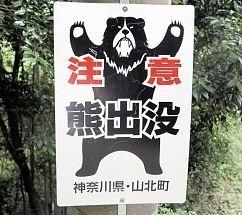 クマに襲われ男性けが 神奈川・山北の林道