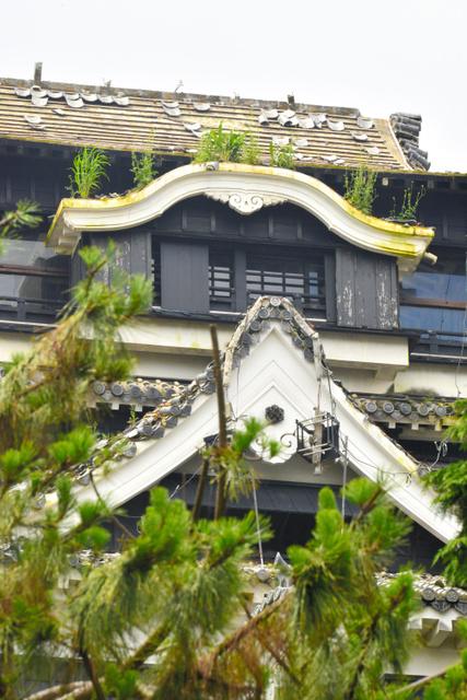 熊本城天守閣、屋根に雑草伸び放題 除草は困難 地震3カ月