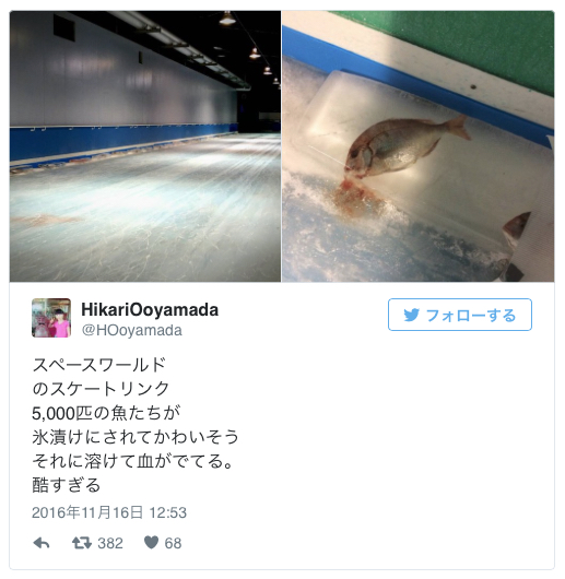 スペースワールド 魚5千匹氷漬け展示を中止