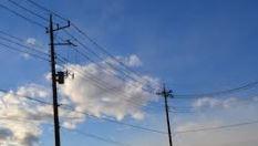 静岡県電柱